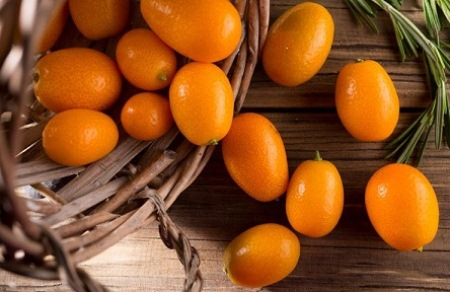 """Müdriklərin qidası -""""Yapon apelsini"""""""
