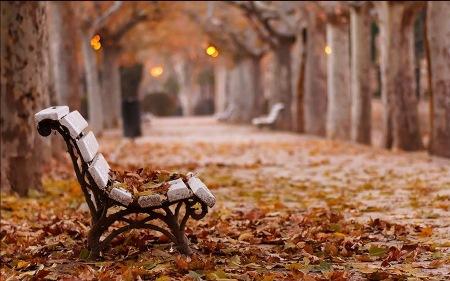 Payız xatirələri - ESSE